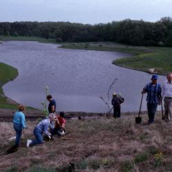 Arboretum employees planting trees on berm with Crabapple Lake in background