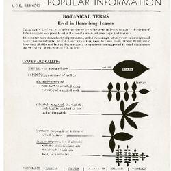 Bulletin of Popular Information V. 22 No. 07