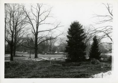 Side view of Arboretum entrance drive with trees during reconstruction when Route 53 was widened