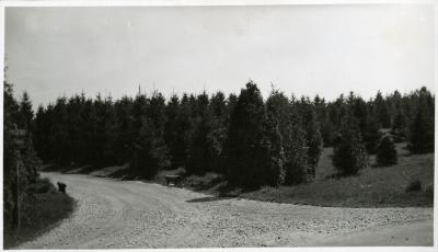 Spruce Hill at intersection just west of Lake Marmo dam and bridge