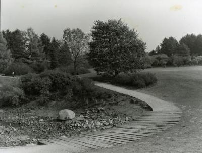 Meadow Lake walk near Visitor Center