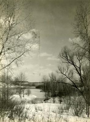 """Winter Vista - Morton Arboretum""  lake scene"