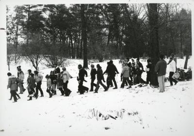 Yule Log Hunt - line of walkers with children being pulled on log in the East Side of the Arboretum