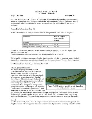 Plant Health Care Report: Issue 2000.07