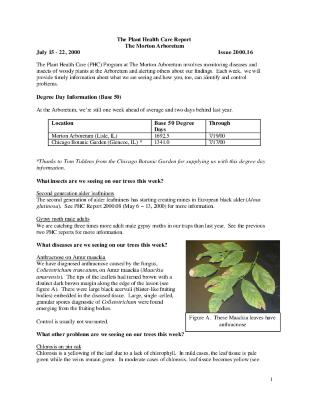 Plant Health Care Report: Issue 2000.16