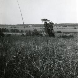 View from prairie remnant on Meadow Road looking northwest over Cutten land
