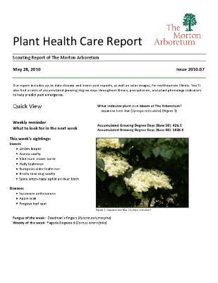 Plant Health Care Report: Issue 2010.07