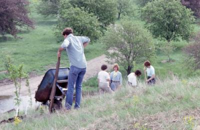 Arboretum employee with wheelbarrow and others planting young trees on side of hill