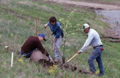Dr. Marion Hall with two employees planting young tree near Crabapple Lake