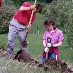 Kris Bachtell and Rita Hassert preparing to plant young tree on hill