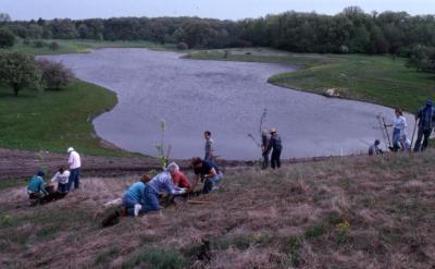 Arboretum employees planting trees on berm near Crabapple Lake