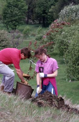 Kris Bachtell lifting out potted young tree as Rita Hassert prepares soil for tree planting on hill