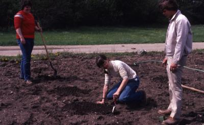 Grounds workers spacing planting holes