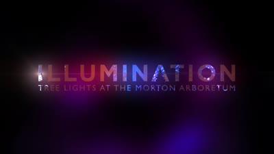 Illumination, Winter 2015-2016, media coverage, short