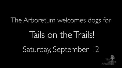 Tails on the Trails, September 12, 2015, trailer