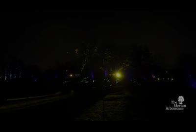 Illumination, Winter 2015-2016, commercial, 35 seconds