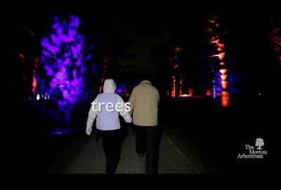 Illumination, Winter 2015-2016, commercial, 10 seconds