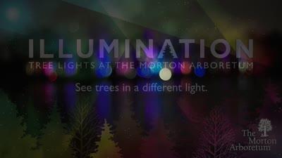 Illumination, Winter 2015-2016, promo
