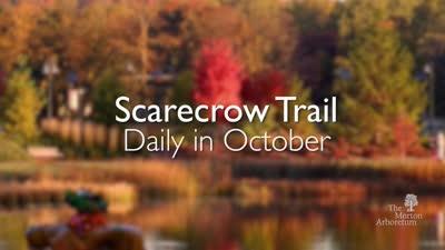 Fall Color Festival, October 2015, trailer