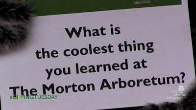 #Giving Tuesday, 2015, What's the coolest thing you learned at The Morton Arboretum?