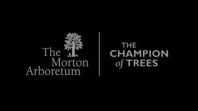 Three Rarest Trees in The Morton Arboretum's Living Collections, web version 2