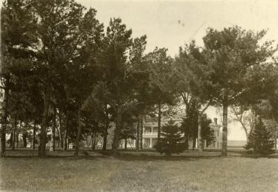 Arbor Lodge, distant view through trees