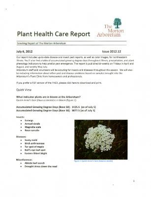 Plant Health Care Report: Issue 2012.12
