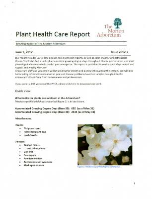 Plant Health Care Report: Issue 2012.7
