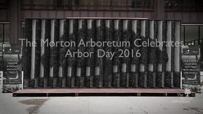 Arbor Day, 2016,  recap for Board of Trustees
