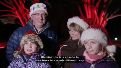 Illumination, Winter 2016-2017, testimonials, open captions