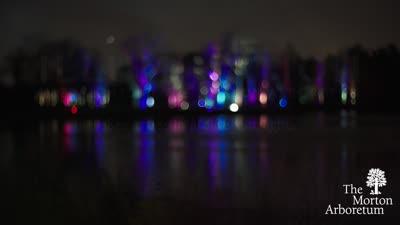 Illumination, Winter 2016-2017, highlights reel
