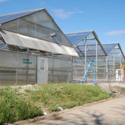 Arbordale Greenhouses