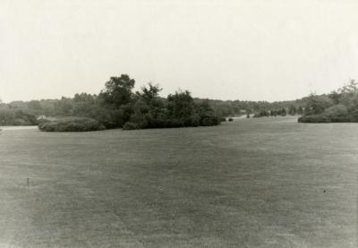 Division 3 Arboretum View