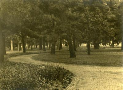 Arbor Lodge gardens and surrounding landscape, brick road curving through trees
