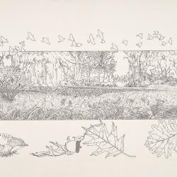 Bur Reed Marsh, Interpretation of Four Seasons: Fall