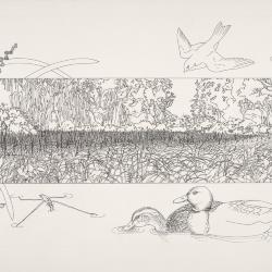 Bur Reed Marsh, Interpretation of Four Seasons: Summer