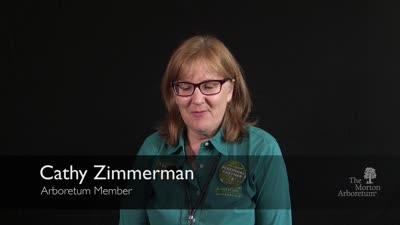 Member Stories, Cathy Zimmerman