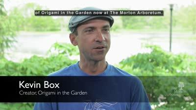 Origami In The Garden, May 19-October 22, 2017, Artist video