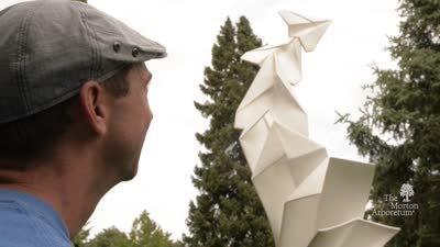 Origami In The Garden, May 19-October 22, 2017, Highlights reel