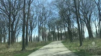 The Champion Of Trees 10K Run, 2017, timelapse