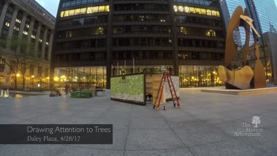 Arbor Day, 2017, Draw Attention To Trees, Daley Plaza, timelapse