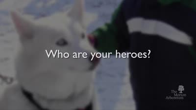 Husky Heroes, January 28-29, 2017, trailer