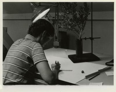 Nancy Hart working at desk