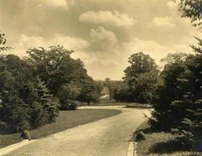 Looking east from archway of Thornhill residence toward main entrance on Park Blvd.