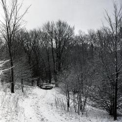 Joy Path in winter, south end