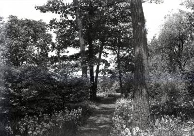 Thornhill residence grounds along Iris Path