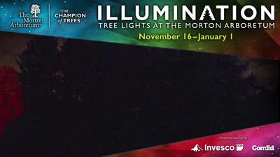 Illumination, Winter 2018-2019, Oakbrook Center digital ad