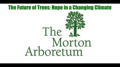 The Future of Trees: Hope in a Changing Climate