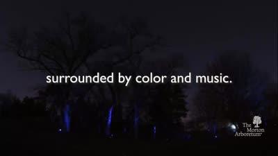 Illumination, Winter 2018-2019, KSMTD, 30 seconds