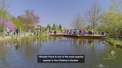 Growing Brilliantly Campaign, Children's Garden, Wonder Pond Reopening